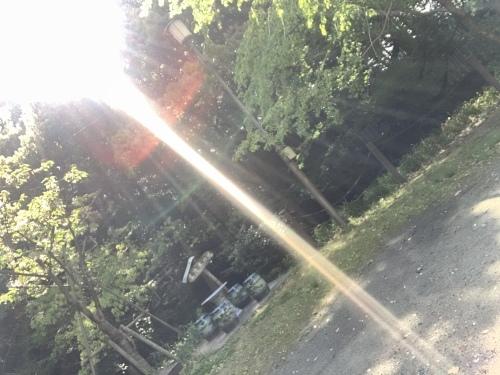 お天道様は見ている_a0384047_22075328.jpeg