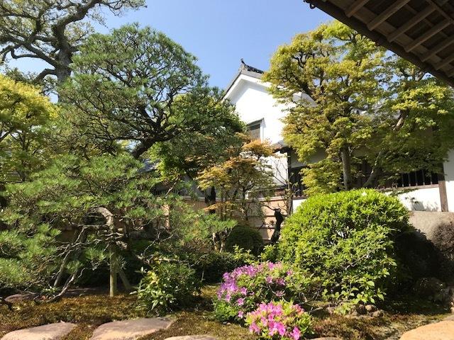 春の「新庭」特別公開スタートします_f0101949_12440565.jpg