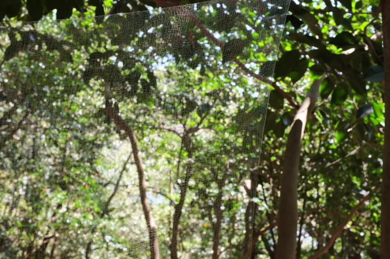 森の展示室を終え、帰ってきました。_c0243045_13025851.jpg