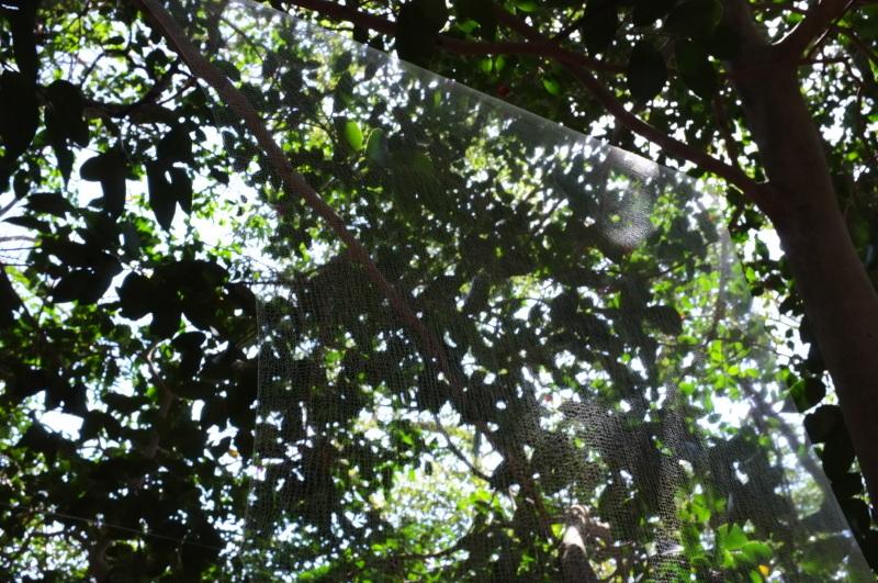 森の展示室を終え、帰ってきました。_c0243045_13032813.jpg