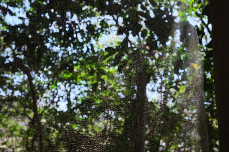 森の展示室を終え、帰ってきました。_c0243045_13051745.jpg