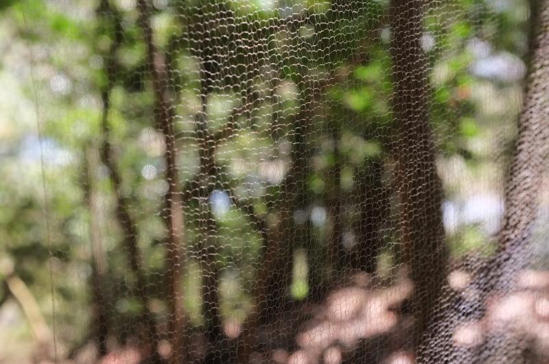 森の展示室を終え、帰ってきました。_c0243045_13052709.jpg