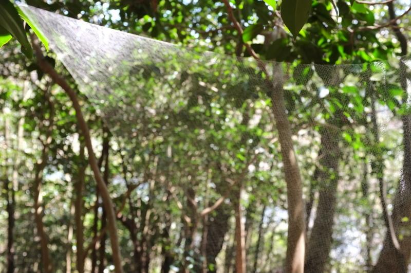 森の展示室を終え、帰ってきました。_c0243045_13080386.jpg