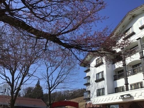 2021/4/15 今年の桜さん_a0140584_08361515.jpeg