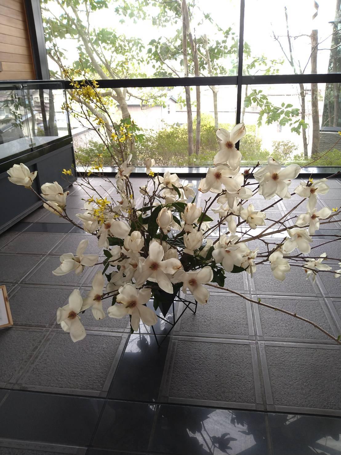 木蓮の香り_c0165824_18422907.jpg