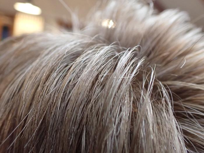 白髪を活かす_c0120834_18301895.jpg