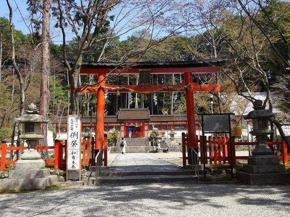 大原野神社・幻の桜「千眼桜」_b0299042_19354804.jpg
