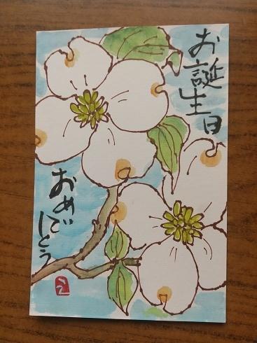りんごの花_a0220570_23084413.jpg