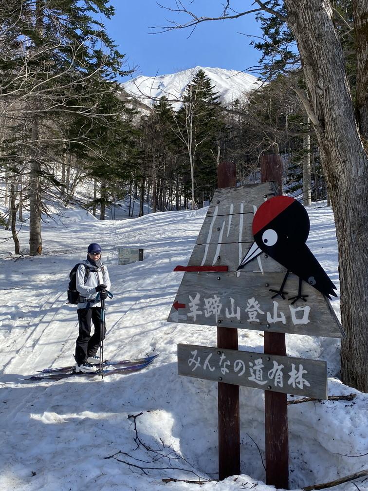 """2021年3月 『山スキーの大雪旭岳、ニセコ、羊蹄山』  March 2021 \""""Ski in Mt Taisetsu, Mt Niseko & Mt Yotei\""""_c0219616_17565438.jpg"""