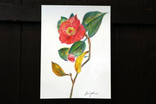 塗り絵 ~ 椿 ~_e0222340_14574259.jpg