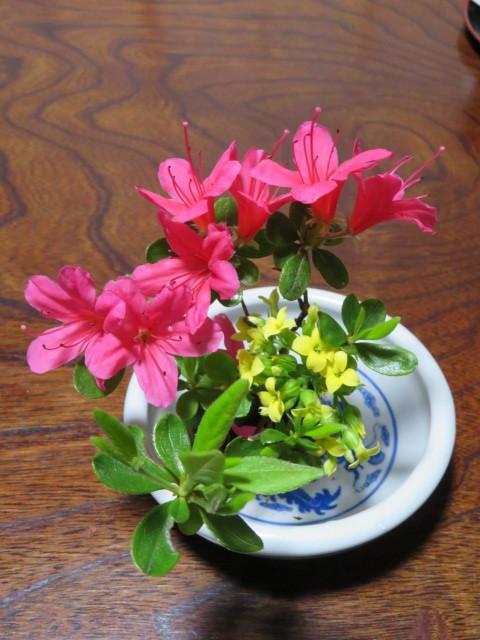 躑躅と皐月4月の花々を活ける_f0329849_16010588.jpg
