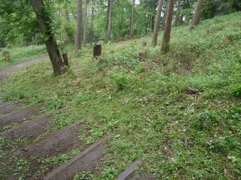 懸案の斜面地の台風被害木片付け終了!4・17六国見山手入れ_c0014967_16470703.jpg