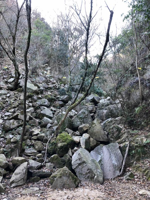 Ashiya Rock Garden Scrambling Classics FKT(Fastest Known Time) 芦屋ロックガーデン&荒地山のクラッシック岩場巡り_b0220886_12325447.jpg