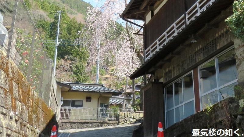 「ゆるキャン△S2」舞台探訪11 なでしこのソロキャン計画その1/3 リン・早川町赤沢宿(第7話)_e0304702_17384279.jpg