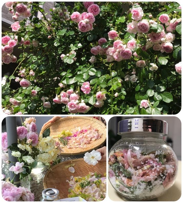 薔薇の花のお茶会*今年は5月15日(土)に決定!_d0085018_10224641.jpeg