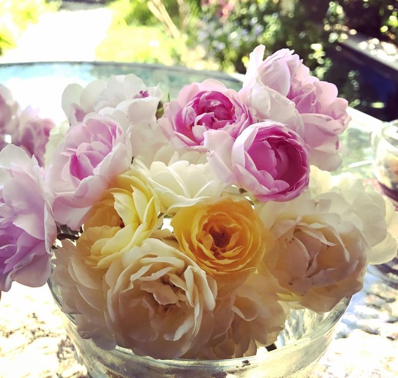 薔薇の花のお茶会*今年は5月15日(土)に決定!_d0085018_11315374.jpg
