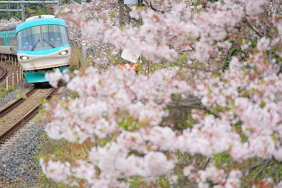 4月3日 大和路の桜を眺めて_f0037227_21463701.jpg