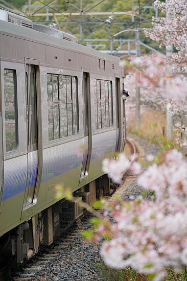 4月3日 大和路の桜を眺めて_f0037227_21464509.jpg