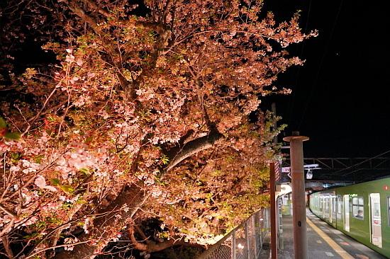 4月3日 大和路の桜を眺めて_f0037227_22070551.jpg