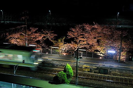 4月3日 大和路の桜を眺めて_f0037227_22072690.jpg