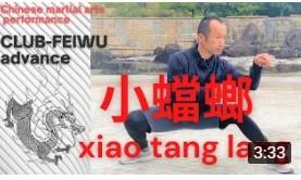 【小蟷螂】映画少林寺にあこがれて_a0039748_11330728.jpg