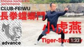 【長拳蟷螂門 小虎燕】Mantis Boxing Tiger-Swallow_a0039748_11505744.jpg