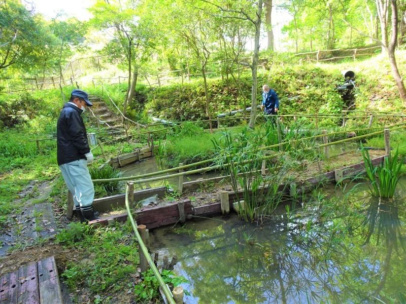 伐採木玉切りと薪置き場整理・・・自由活動日_c0108460_14455102.jpg