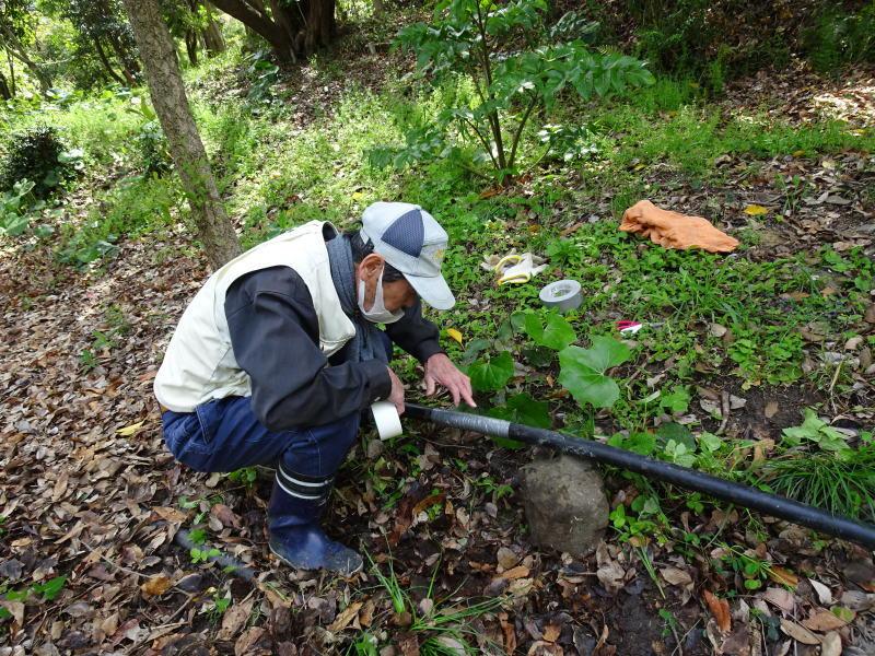 伐採木玉切りと薪置き場整理・・・自由活動日_c0108460_14474507.jpg
