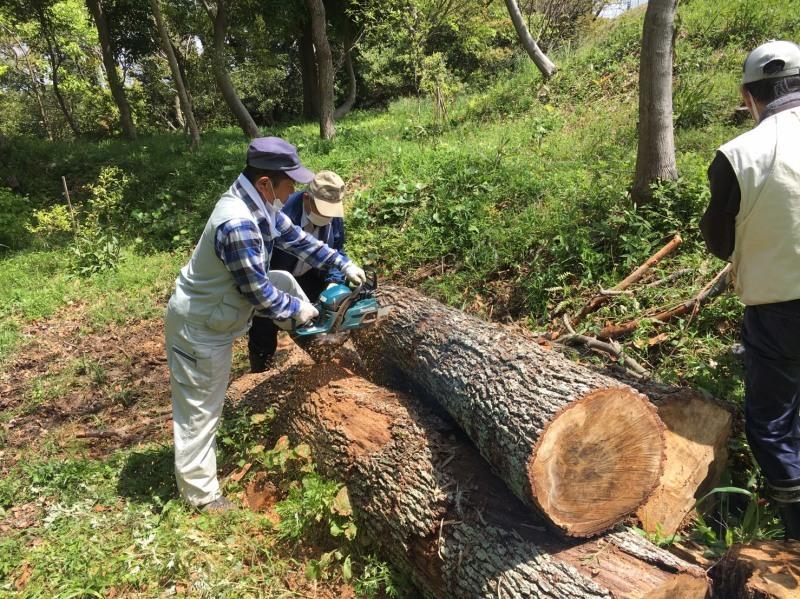 伐採木玉切りと薪置き場整理・・・自由活動日_c0108460_14505233.jpg