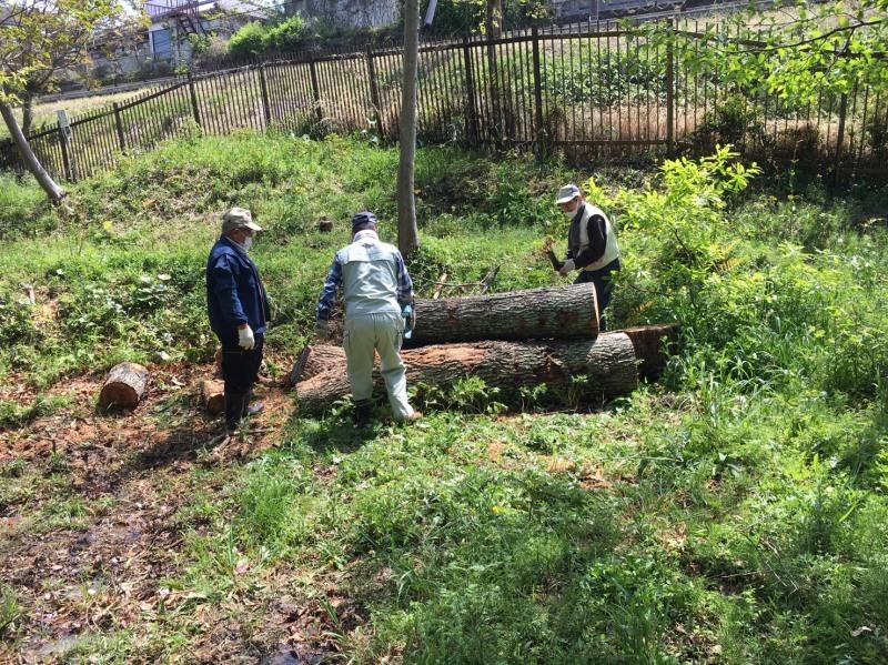 伐採木玉切りと薪置き場整理・・・自由活動日_c0108460_14524737.jpg