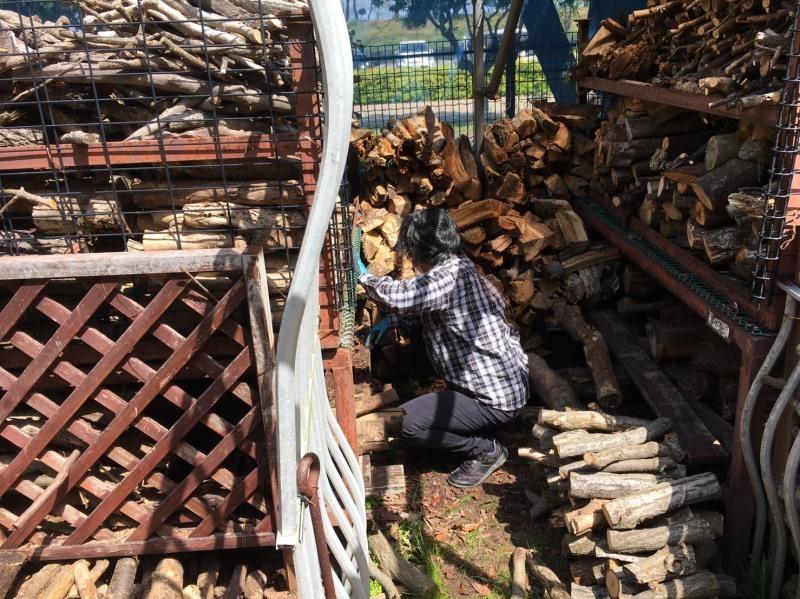 伐採木玉切りと薪置き場整理・・・自由活動日_c0108460_14524868.jpg
