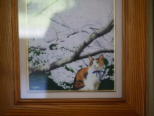 なっちゃんの朝散歩とパセリの冷凍保存_f0054677_08245627.jpeg