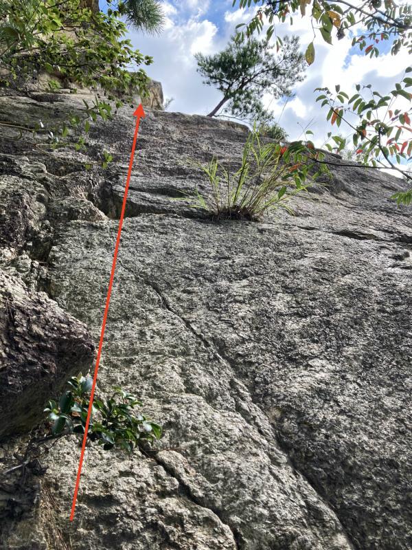 Ashiya Rock Garden Scrambling Classics FKT(Fastest Known Time) 芦屋ロックガーデン&荒地山のクラッシック岩場巡り_b0220886_10145322.jpg