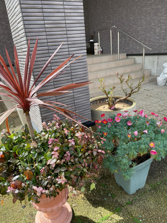 庭の花たちと4月誕生会_f0067514_10183948.jpg