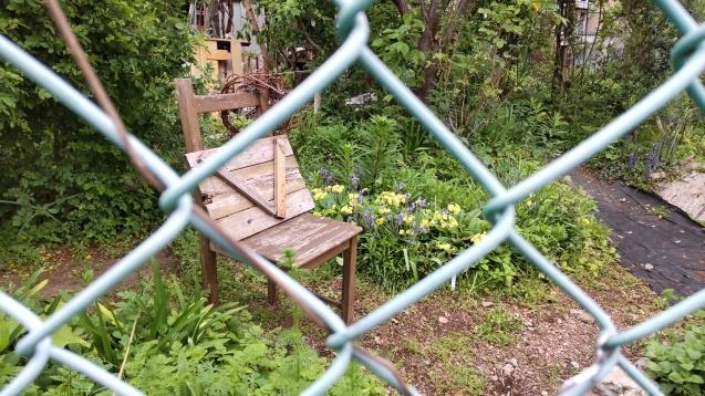 秘密の花園。_c0221732_23570560.jpg