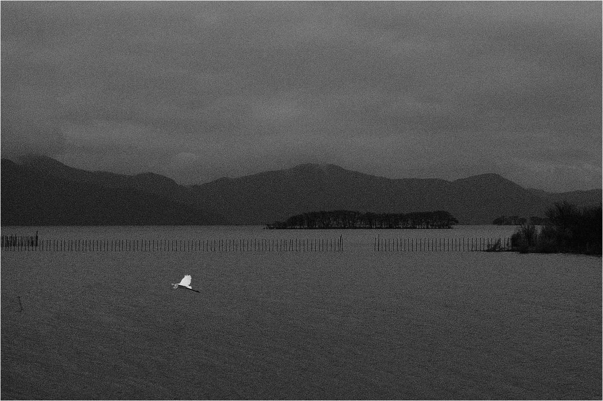 奥琵琶湖 - 父ちゃん坊やの普通の写真その3
