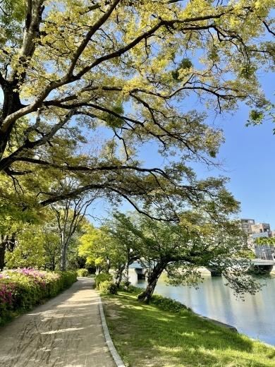 川の街広島、川辺をお散歩(*´╰╯`๓)♬_a0213806_17343399.jpeg