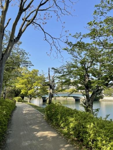 川の街広島、川辺をお散歩(*´╰╯`๓)♬_a0213806_17350075.jpeg