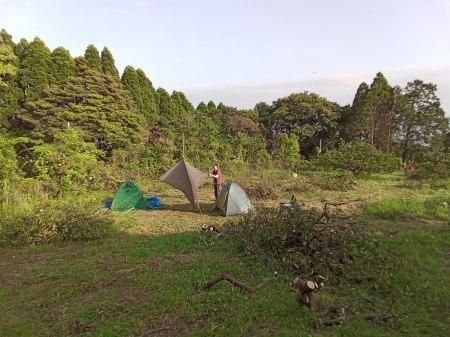 みかん畑で初キャンプ。_a0300410_15134498.jpg
