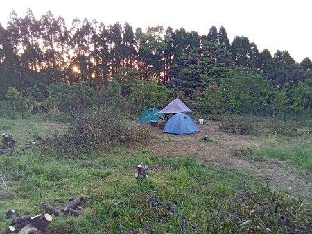 みかん畑で初キャンプ。_a0300410_15143871.jpg