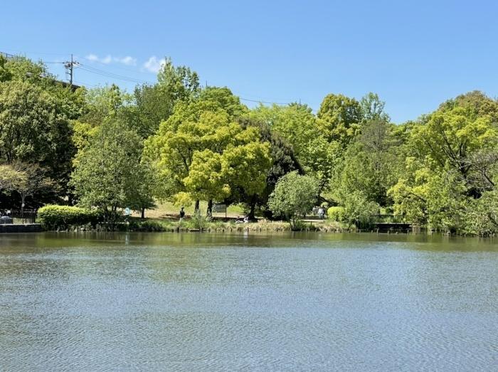 公園歩きさん_b0067012_23073299.jpeg