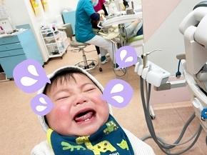 子どもたちこそ未来!赤ちゃん連れ大歓迎💛_b0191221_22103564.jpg