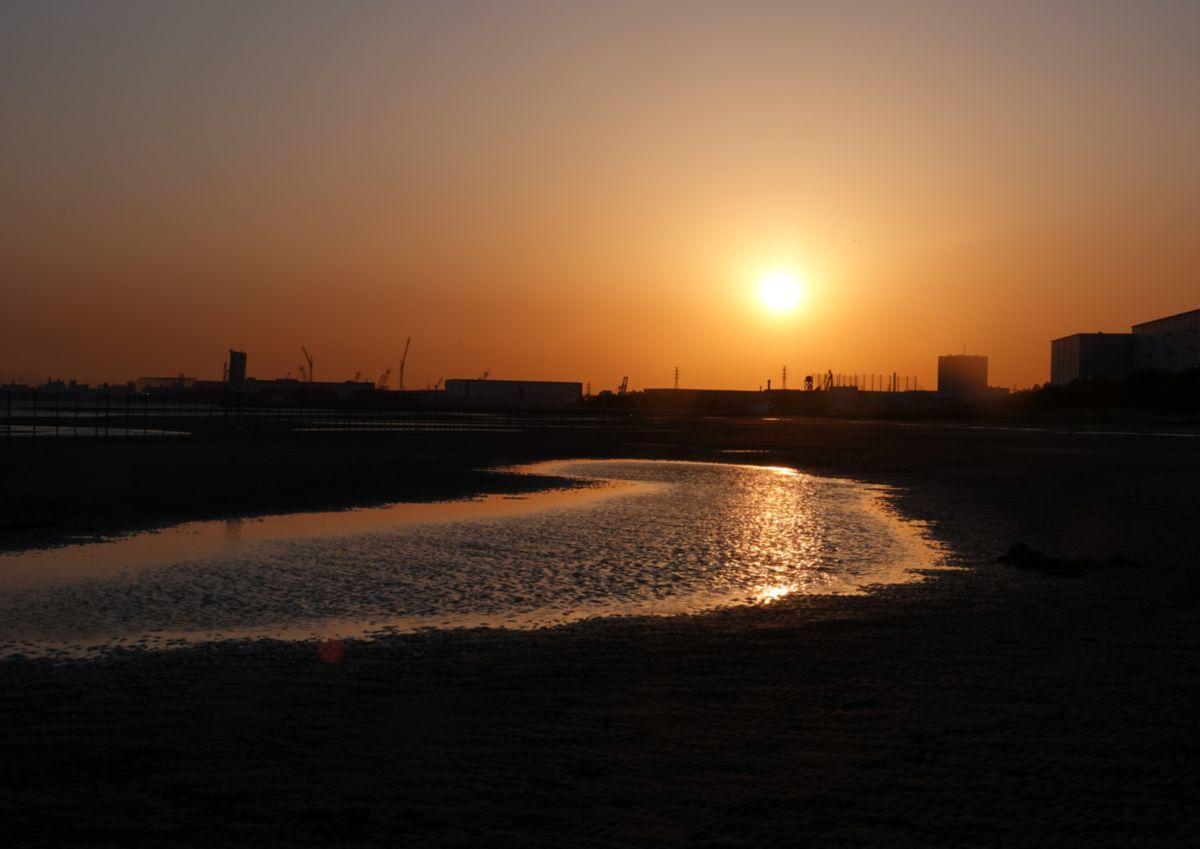 暮れゆく浜―三番瀬ー_c0104227_08060335.jpg