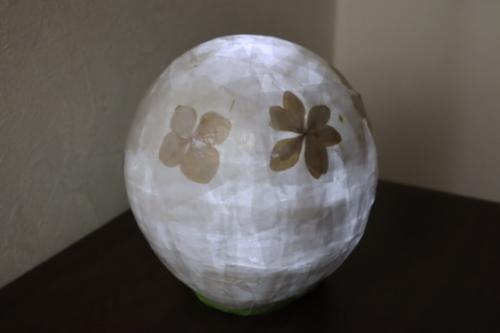 ペーパークラフト ~ 押し花のランプシェード ~_e0222340_15143094.jpg
