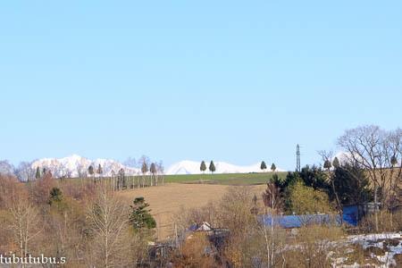 丘の上に並んで…4月の美瑛_d0340565_19391192.jpg