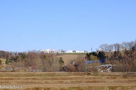 丘の上に並んで…4月の美瑛_d0340565_19392010.jpg