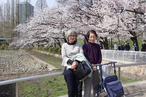 3月末の花見_c0193735_18482953.jpg