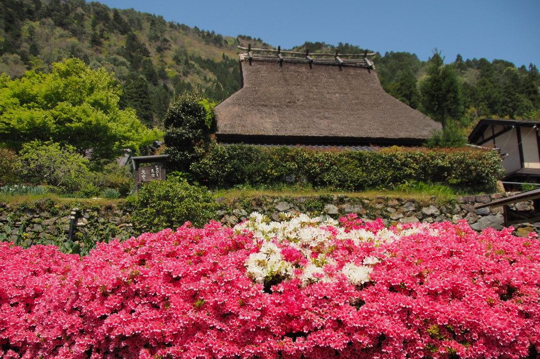 春の美山の里_d0090161_15535774.jpg