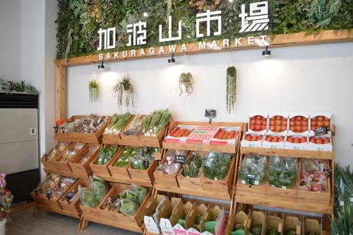 桜川市との連携_d0101562_11384275.jpg