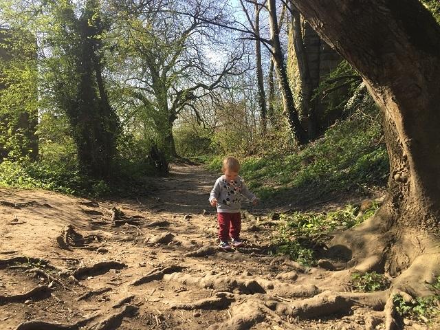 自然公園でウサギちゃんに遭遇!_a0123372_04154047.jpg